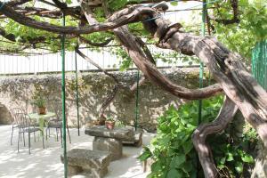 Casa Jardín de la Plata, Apartmanok  Baños de Montemayor - big - 32