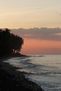 Spa Village Resort Tembok Bali (7 of 75)