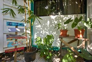 Soleadas Homes, Chaty v prírode  Pláž Santa Teresa - big - 6
