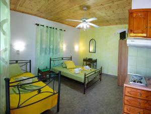 Villa Dimitris Apartments & Bungalows, Apartmány  Lefkada - big - 9