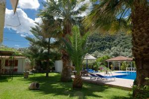 Villa Dimitris Apartments & Bungalows, Apartmány  Lefkada - big - 37