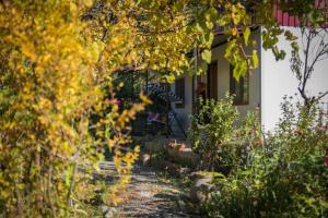 Ludwig Guesthouse, Penziony  Lagodechi - big - 52