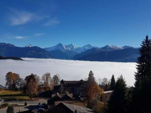 Carpe Diem - Rooftop of Interlaken - Apartment - Beatenberg
