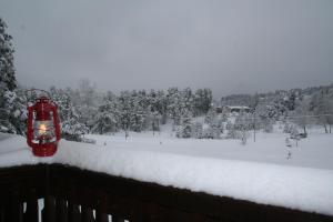 Divčibare Snežna Kraljica ap.13 - Apartment - Divcibare