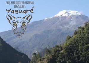 Yaguare - Ibagué