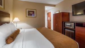 Best Western PLUS Arena Hotel.  Foto 20