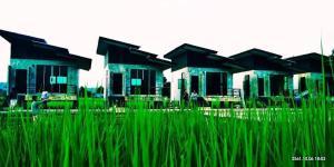 พักที่แม่สะเรียง - Ban Mae Salap