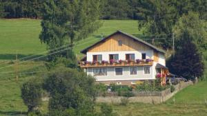 Ferienwohnung Greim - Apartment - Sankt Peter am Kammersberg