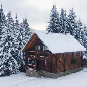 obrázek - Cottage Karinka