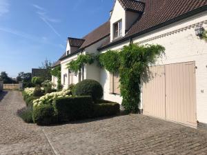 obrázek - House & Garden