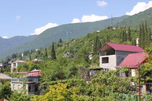 Guest House Zvanba, Affittacamere  Gagra - big - 19
