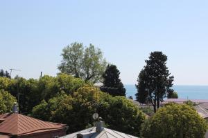Guest House Zvanba, Affittacamere  Gagra - big - 18