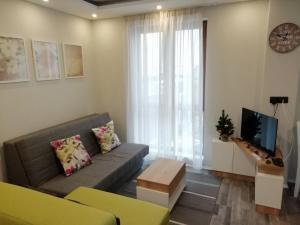 A1 Premier Milmari resort - Apartment - Kopaonik