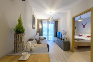 Apartament Jelonek Izerski 5D Apartamenty