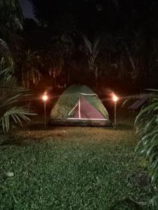 Camping oasis, Palma