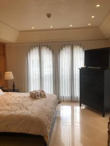 Mamilla's penthouse, Apartmány  Jeruzalém - big - 52