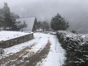 Chalet in the Forest Achaia Greece