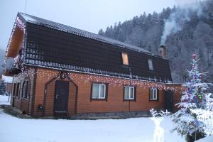 Cottage Milena - Hotel - Mykulychyn