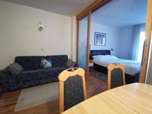 Apartment Brinovec