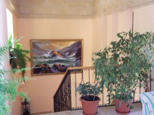 San Antonio Guesthouse (15 of 66)