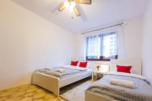 Adventure Apartments - Włodarzewska 59B