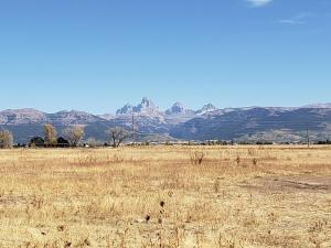 Cache Vista Ranch Unit B, Ferienwohnungen  Tetonia - big - 23