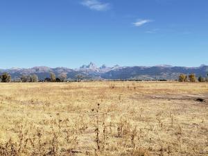 Cache Vista Ranch Unit B, Ferienwohnungen  Tetonia - big - 29