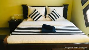Evergreen Hotel Dambulla - Dambulla