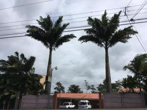 Hospedaje Las Palmas, Quesada