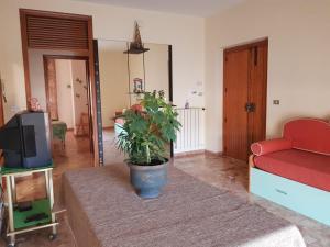 Appartamento molto luminoso a 4 km dal mare - AbcAlberghi.com