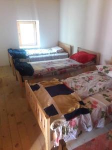 Relax guesthouse - Tropojë