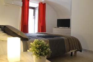 ct_house/Santa Teresa - AbcAlberghi.com