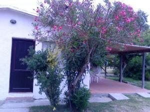 obrázek - Casa en el corazón de La Paloma