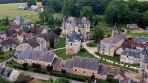 Chateau Celle Guenand - Angles-sur-l'Anglin