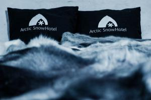 Arctic SnowHotel & Glass Igloos (6 of 48)