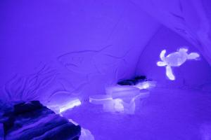 Arctic SnowHotel & Glass Igloos (9 of 48)