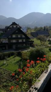 Comfy home in the center of Bohinj valley