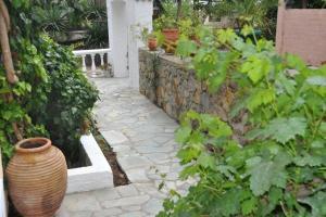 Artemis Rooms Aegina Greece
