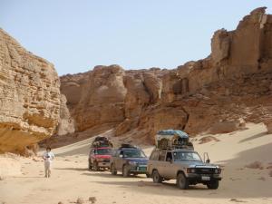 Ahmed Safari Camp, Hotels  Bawiti - big - 26