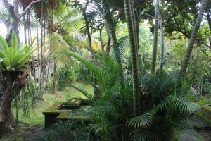 Villa Bhuana Alit, Гостевые дома  Убуд - big - 78