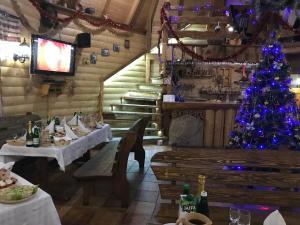 Hotel Dykyi Med - Tatariv