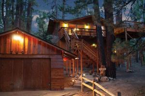 obrázek - 027 Treetop Lodge Cabin