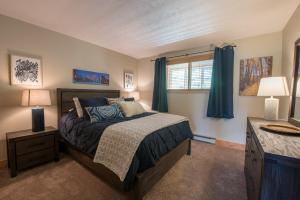Newly Remodeled Paradise Condo - Apartment - Crested Butte