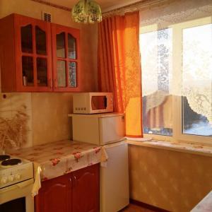 Apartment na Kameneva - Pushnoy