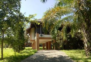 Paicozyhouse - Pang Mapha