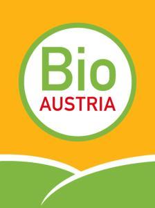 Bio Ferienbauernhof Greber, Bauernhöfe  Schwarzenberg im Bregenzerwald - big - 31