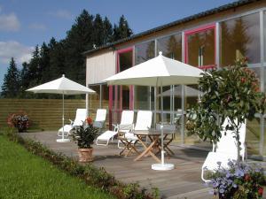 Berghof Fetz, Hotely  Schwarzenberg im Bregenzerwald - big - 51