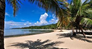 Coconut Grove, Case vacanze  Palmetto Bay - big - 35