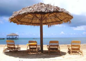 Coconut Grove, Case vacanze  Palmetto Bay - big - 4