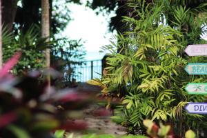 Coconut Grove, Case vacanze  Palmetto Bay - big - 20